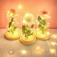 Seção amante Tampa Rose vidro Traga Lamp Decoração Produtos de mobiliário para exibição preferência à sua aplicação Simulação flor pequena luz noturna