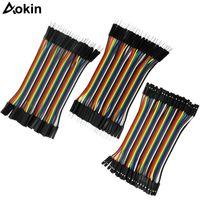 Cables DuPont 120 PCS Macho a hembra a masculino 10 cm Líneas DUPONT para cables de puente de tablero / Cable para Arduino DIY KIT