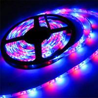 5M 300Leds Non-waterproof RGB Led Strip Light 3528 DC12V 60Leds/M Flexible Lighting String Ribbon Tape Lamp Home Decoration Lamps
