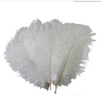 10-12 polegadas (25-30 cm) plumas coloridas de plumas de avestruz para festa de casamento peça central do casamento do evento decoração festiva decoração GB834