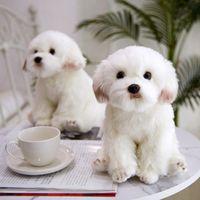Hohe Qualität Maltesischer Hund Plüschtier Maltesischer Hund Puppe Simulation Puppe Geschenk für Kinder und Liebhaber Geburtstagsgeschenk