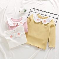 Kız Çocuk Clothong T gömlek Uzun Kollu Pet Pan Yaka Nakış Çiçek giyim ile 100% pamuk Bahar Toptan