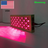 Bloomveg hot new product beauty skin 300W whole body Led red...