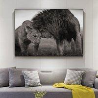 Lions tête à tête toile Peintures sur les affiches mur d'art et estampes Animaux sauvages d'Afrique Cuadros Images pour Décoration