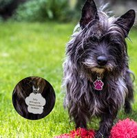 Personalized Dog Tags Engraved Cat Puppy Pet ID Name Collar ...