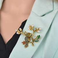 Foglio della perla del gufo Corpetto Sciarpa clip a cristallo Pappagalli Spille Spilla Broches gioielli per le donne B505