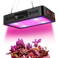 1200W Dual Switch Funzione Texing Funzione LED Grow Light Spectrum Full Spectrum Dual Chip Grow Light Fixtures per la crescita delle piante da interno Azioni USA
