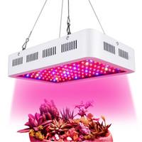 1500W de alta potencia LED Cultive la luz con 8 bandas Relación de color de espectro completo para plantas de interior VEG y floración en invernadero e hidroponía