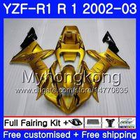 Goldene HOT heißen Bodys für YAMAHA YZF R 1 YZF 1000 YZF1000 YZFR1 02 03 Karosserie 237HM.15 YZF R1 02 YZF1000 YZFR1 2002 2003 Verkleidungs-Rahmen