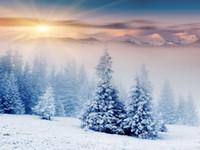 웨딩 스튜디오 소품에 대한 장엄한 일몰 겨울 산 풍경 비닐 사진 배경막 숲 나무 사진 부스 배경
