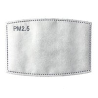 PM2. 5 Activated Carbon Mask Filter Replaceable Anti Haze 5 L...