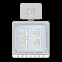US Warehouse LED-lamp 10W 20 W 30 W 50W 100W schijnwerper Infraroodsensor Thuis Tuin Balkon Buitendeur Lamp Waterdichte IP65 Stuur gratis