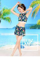Новый купальник Мода Sexy ларчик Собранная Консервативная Split Показать Thin юбка стиль японский и корейский купальник
