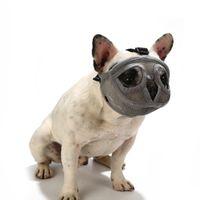 Court Museau Pet Muselière confortable réglable Mesh bouledogue français Pug de protection bouche Museau Masque de formation de chien Dispositif anti-aboiements