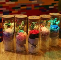 Forever Rose LED Glass Cover 5 Colors Floral Wishing Bottle ...