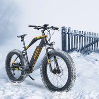 Прохладный сокол 7 скорость с ЖК-дисплеем Snowmobile 5 PAS Electric Bike 48V 13Ah 624W Сильная литий-ионная батарея с длительной выносливостью