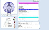 2021 أحدث خلية 12D NLS AURA شقرا القزحية الصحية ماسحة ماسحة مدلك الجسم محلل جهاز غير خطي محلل البيولوجي AE تحليل باللغة الإنجليزية الروسية الألمانية اليابانية DHL