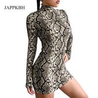 캐주얼 드레스 Jappkbh 뱀 인쇄 여성 드레스 봄 여름 터틀넥 레오파드 바디 콘 긴 소매 섹시한 Vestidos Robe Femme