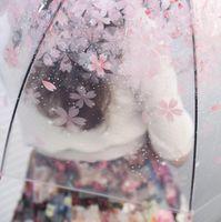 Apollo Вишневого цвета Зонтики Clear Cute Bubble Deep Dome Зонт Сплетница Ветер сопротивление Зонт DHL Free LXL1213-L