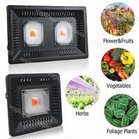 Full Spectrum Grow Lights 100W 50W Impermeable IP67 COB LED lámpara para la planta interior al aire libre hidropónico de la iluminación de invernadero DHL