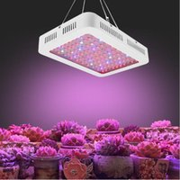 LED-höjdpunkter växt ljus 1000W Full Spectrum Veg / Bloom Control Lampa för växthus, växthus jordbruk