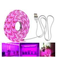 LED crece la luz de espectro completo USB crece la luz de tira de 1 m 1,5 m 2m 3m 4m 5m 2835 DC5V LED Phyto Lámparas de Plantas Flores invernaderos hidropónicos