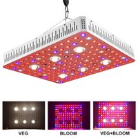 Full LED Spectrum élèvent la lumière 1000W 2000W 3000W LED COB usine Lumière grandir lampe pour les plantes d'intérieur à effet de serre Horticulture