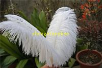 50 adet beyaz Devekuşu Tüy Plume Düğün balo centerpiece noel tüy dekor için düğün ev masa dekor parti kaynağı