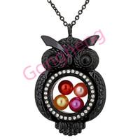 h1520 precioso búho negro magnético de cristal flotante medallón de la perla Rhinestone colgante mujeres encantos collar