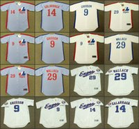 Montreal Expos 29 Tim Wallach 14 Andres Galarraga 9 Marquis Grissom 8 Gary Carter 10 Andre Dawson Delino Deshields Baseball Jersey 01