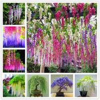 100% семена подлинные высокое качество глицинии деревьев бонсай растение 100 шт. Для домашнего сада Fourseseason Цветущий двор красивые бонсиис