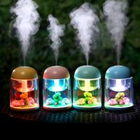 LED Micro Umidificatore per paesaggio Mini Umidificatore ad aria USB Diffusore ad ultrasuoni Mist Maker Colorato che cambia LED Night Light