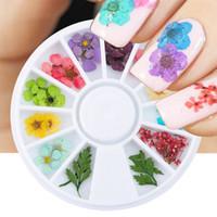 24pcs / Wheel Mixed Natural Daily Diy 3D Pressed Blower Leave Slider Slider placter Polish Nail Art