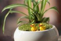 XBJ035 bonito resina 3D Mini pequenas 4pcs pato amarelo 18 * 15 * 10mm Resina Artesanato kawaii Flatback cabochão decoração