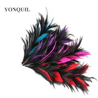 "High quality multiple colors feathers 10 ""  25cmDIY Clo..."