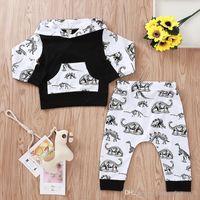Baby Boy одежда набор толстовка динозавров + брюки хлопок мультфильм ребенок капюшон новый малыш осень 2019