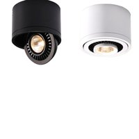 Cob LED Recessed Luz de teto 3W 7W 10W 18W Montado de superfície LED Lâmpada de teto Luz do ponto 360 graus Rotação LED para baixo