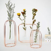 Nordic Gold Glass Cuvette Vaso moderno fiore placcato Ferro vaso di moda pianta creativa terrario camera casa Wedding Decorati