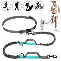Manos retráctiles Correa de perro libre con duales bungees para perros de hasta 150 libras, cinturón ajustable, correa de costura reflectante para correr caminar