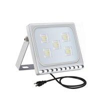 30W шестого поколения Прожектор Ультратонкий Cold American Standard White с разъемом 110V наружного освещения Led
