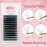 Nouveau 1 seconde Blooming fans Cils Pré-en Volume Lashes soie Cils, ventilateurs faciles fournitures individuels faux cils de vison
