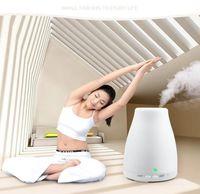 100ml Ätherisches Öl Diffusor Tragbarer Aromabefeuchter Diffuser LED-Nachtlicht Ultraschall kühlen Nebel-Frischluft-Spa Aromatherap