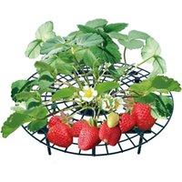 الفراولة يقف الإطار حامل بلكونة زراعة الرف دعم الفاكهة زهرة النبات تسلق الكرمة عمود الحدائق يقف معدات حدائق