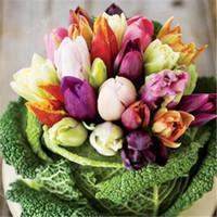 100 جهاز كمبيوتر شخصى توليب توليب بونساي النباتات نبات زهرة جميلة Tulipanes زهرة لحديقة (لا الزنبق لمبات) زهرة ترمز الى الحب