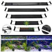 D'aquarium À Mené Vrac Éclairage Royaume Uni En Vente 2019 Gros lFK1cJ
