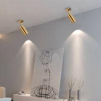 Spotlight superficie dorata Nordic montato a soffitto delle famiglie da incasso a parete guardaroba negozio di abbigliamento commerciale leggero della pista del LED