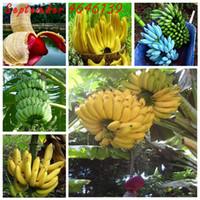 Promoção grande em um perdas de 100 pcs sementes anão anão banana bonsai árvore, árvore de fruta tropical, bônus flor de varanda para plantio em casa