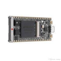 Ny 64MBIT SDRAM OnBoard FPGA Downloader Dual Flash Risc-V Development Board Module Freeshipping