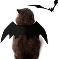 حزب مهرجان قابل للتعديل القط بات الجناح الحيوانات الأليفة تأثيري الملابس هالوين ديكور