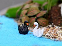10pcs Bianco e nero piuma Cigni Fairy Garden ornamenti Moss Micro Paesaggio Crafts decorazioni creative Artigianato
